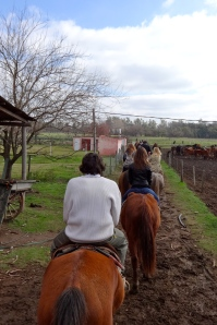 Estancia Don Silvano - Horseback Riding