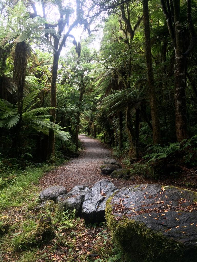 Te Ara a Waiau Track to the Car Park area.